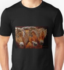 """Larry,Curlie and Moe"" T-Shirt"