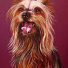 """""""Trouble"""" A Portrait Of A Yorkshire Terrier by Susan  Bergstrom"""
