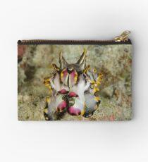 Flamboyant cuttlefish - Metasepia pfefferi Studio Pouch