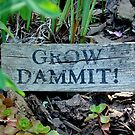 """Gardening Directions"" by Susan McKenzie Bergstrom"