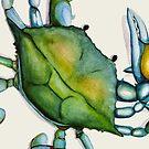 Crab by Dylan Morang