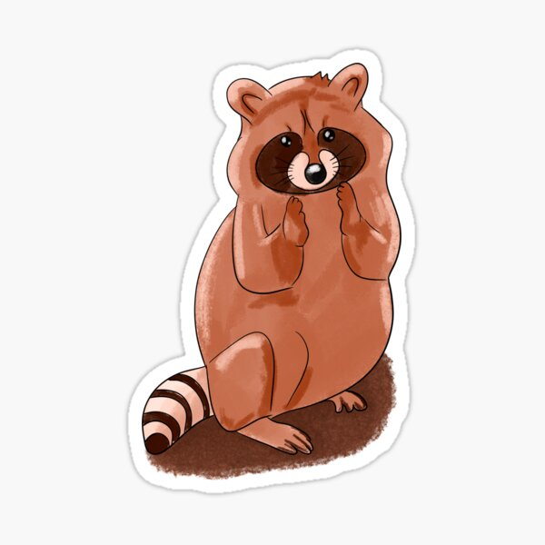 Cute Raccoon  Sticker