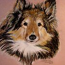 """""""Jammers"""" Portrait Of A Sheltie by Susan  Bergstrom"""