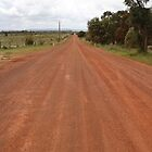 Empty Road of Red by kalaryder