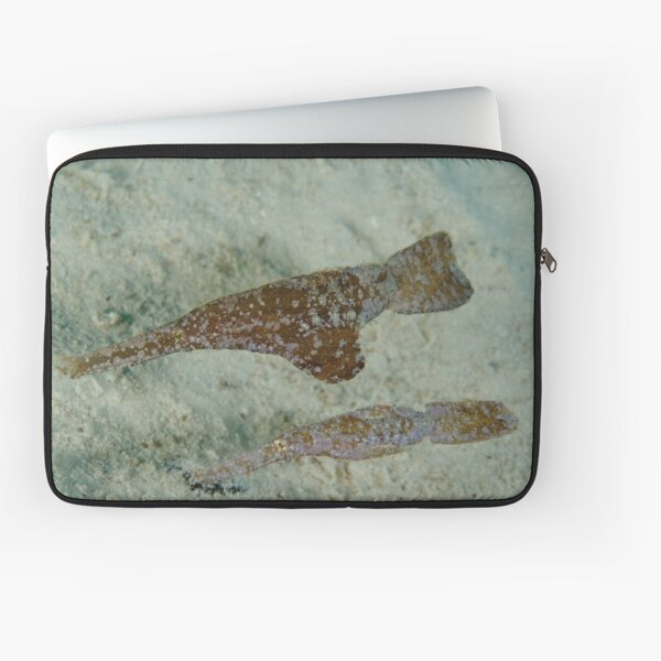 Robust ghostpipefish - Solenostomus cyanopterus Laptop Sleeve