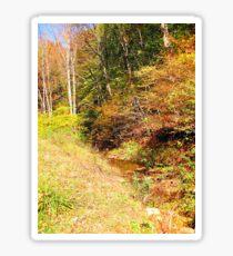 stream in color Sticker