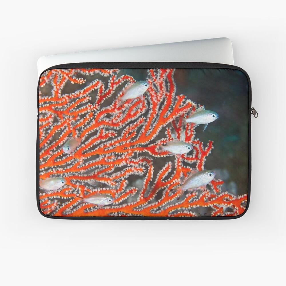 Damselfish in sea fan Laptop Sleeve