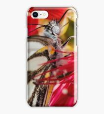 Caper White Butterfly iPhone Case/Skin