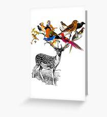DEER BIRDY Greeting Card