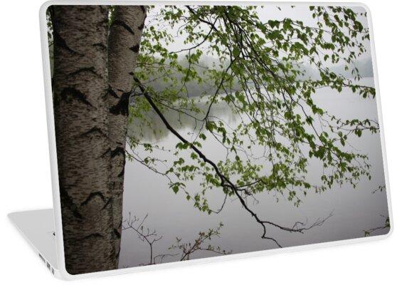 Birch Tree Waterscape 3235 by Thomas Murphy