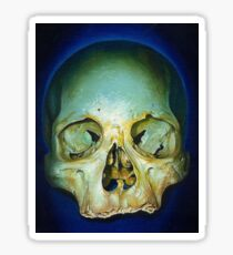 yellow blue realistic skull Sticker