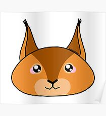 Squirrel - Forest animal collection Poster