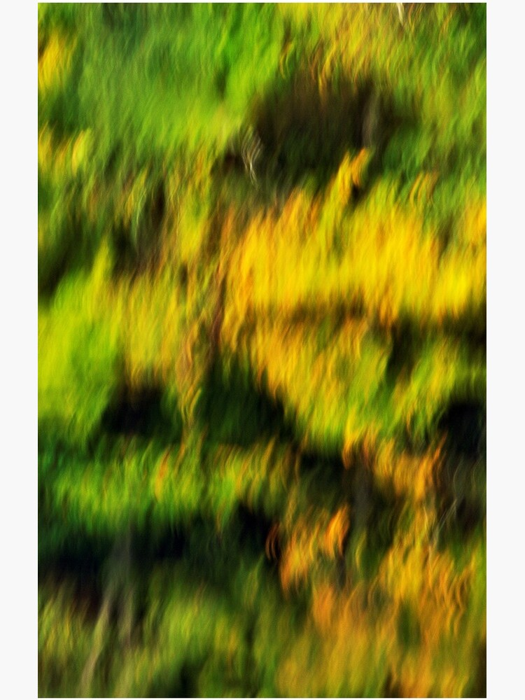 Abstract autumn colours reflected in the river by patmo