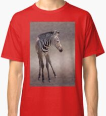 Dreams in Black and White (Grevy's Zebra) Classic T-Shirt