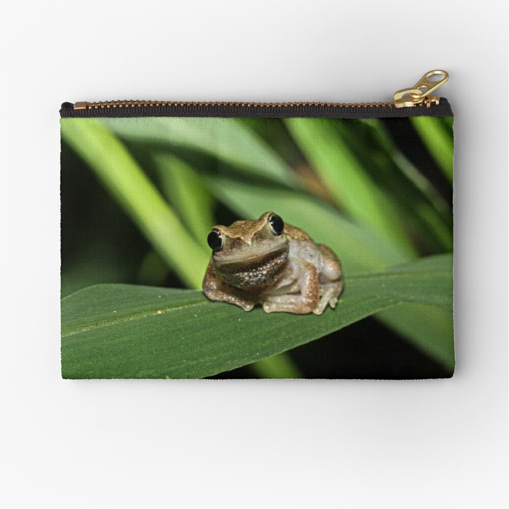 Hello Frog Zipper Pouch