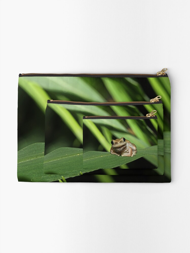 Alternate view of Hello Frog Zipper Pouch