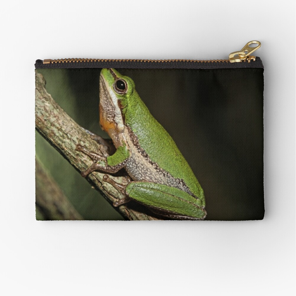 Frog on Branch Zipper Pouch