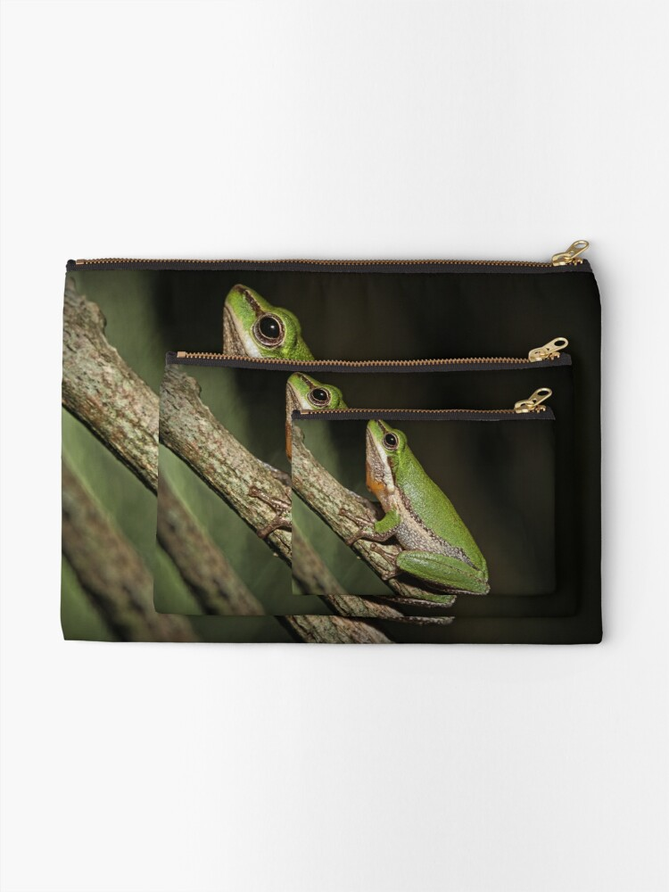 Alternate view of Frog on Branch Zipper Pouch