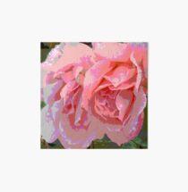 The E-Rose Art Board