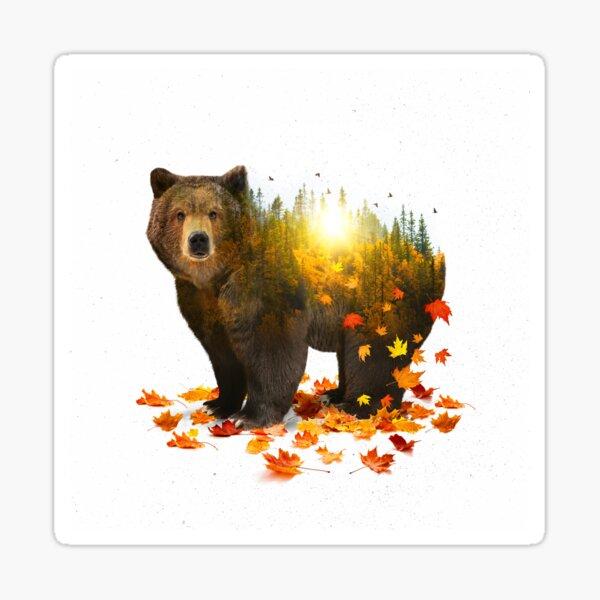 Equinox | Bear Sticker