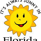 SUNSHINE SMILEY FLORIDA FACE CUTE HAND DRAWN SMILE POPULAR STICKERS TOP DECAL SUN by MyHandmadeSigns