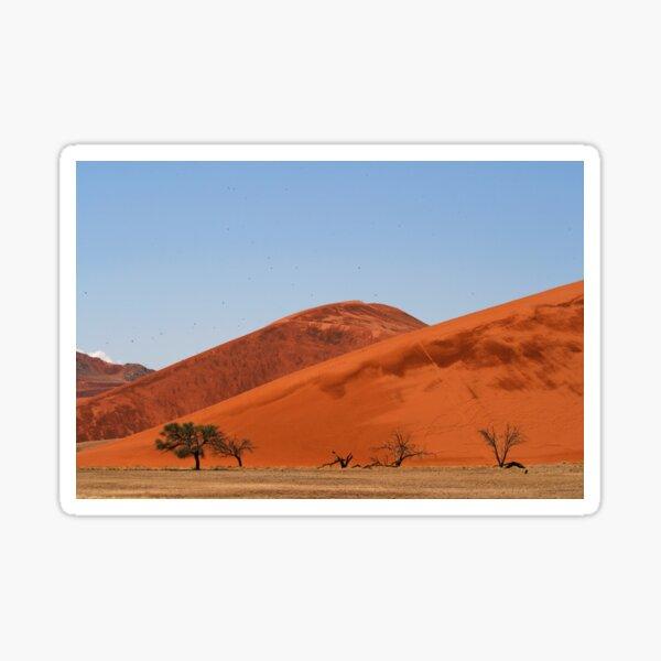 the desert birds Sticker
