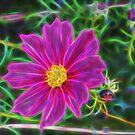 Fractal Flower 2 by Lisa Kent