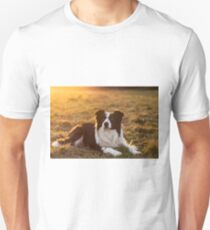 border collie at sunset Unisex T-Shirt