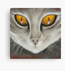 Kitty Cat Close-up Canvas Print
