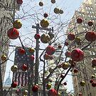 Seasonal Philadelphia by James & Laura Kranefeld