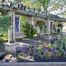 Peace garden by PhotosByHealy