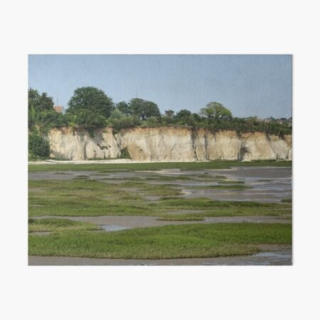 Mud flats and white cliffs Art Board Print