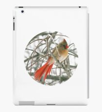 Redbird with Red Tail iPad Case/Skin