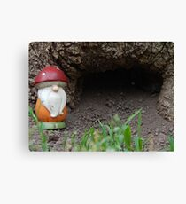 a gnome and his home Canvas Print