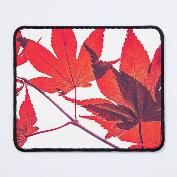 Fall leaves pattern Mouse Pad