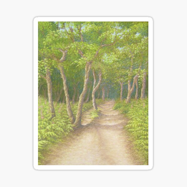 Path Through the Trees, Leith Hill, Surrey Sticker