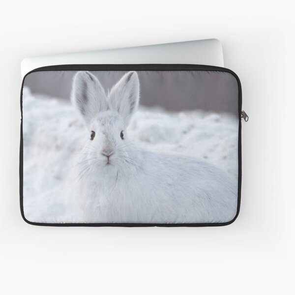A Moment of Indecision Laptop Sleeve