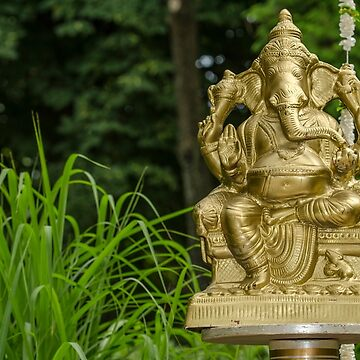 Ganesha by bareri
