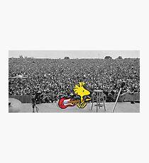 Woodstock at Woodstock Photographic Print