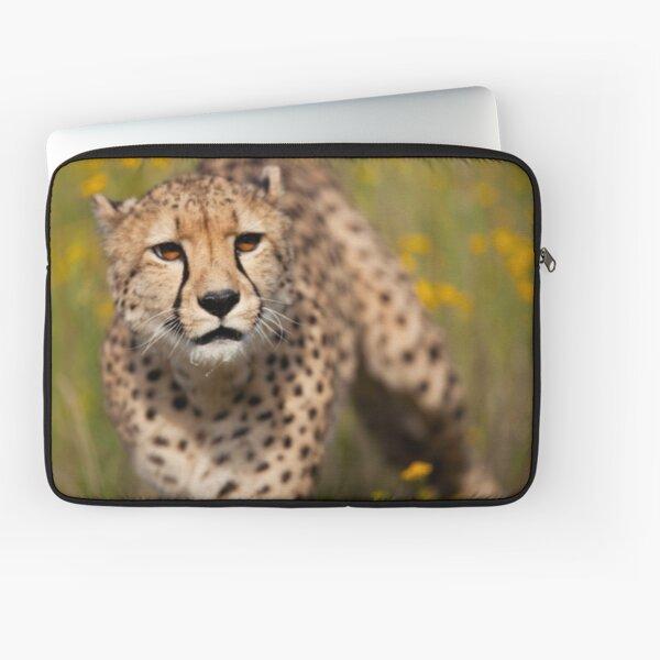 Cheetah close-up Laptop Sleeve