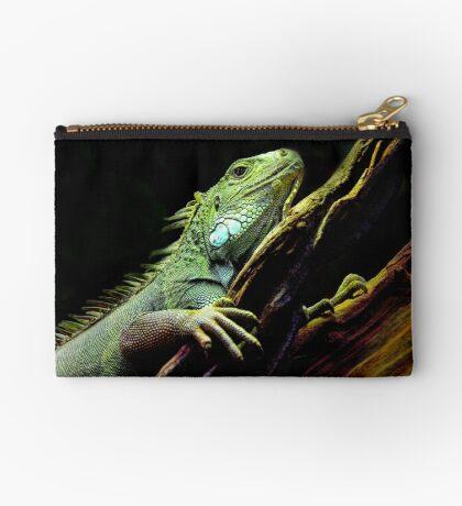 Iguana Studio Pouch