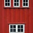 Windows in an old barn by Arie Koene