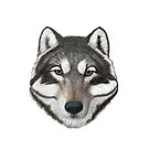 Wolf Head T-Shirt  by Walter Colvin