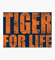 Tiger for Life -Navy and Orange Photographic Print
