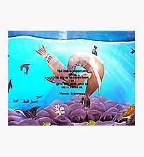 Motivational Giving Out Love Quote With Sea Lions Painting  Photographic Print
