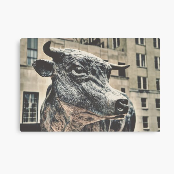The Bull of Durham Canvas Print