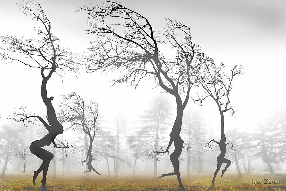In The Mist by Igor Zenin