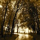 Light in the Distance - Castle Marter, Ireland by Jenny Hambleton