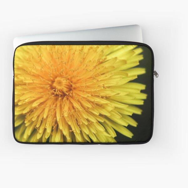 Dandelion Flower Head Laptop Sleeve