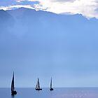 Lake Geneva and the Alps.....Switzerland by Imi Koetz